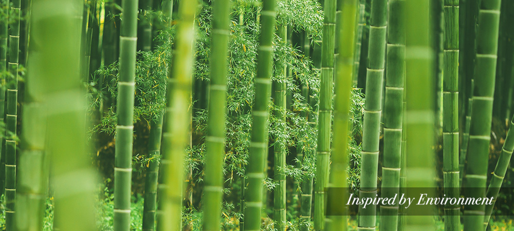 Bamboo is Inspired by Environment